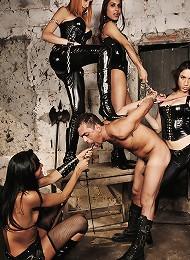 Four viscious trannys punish a curious submissive